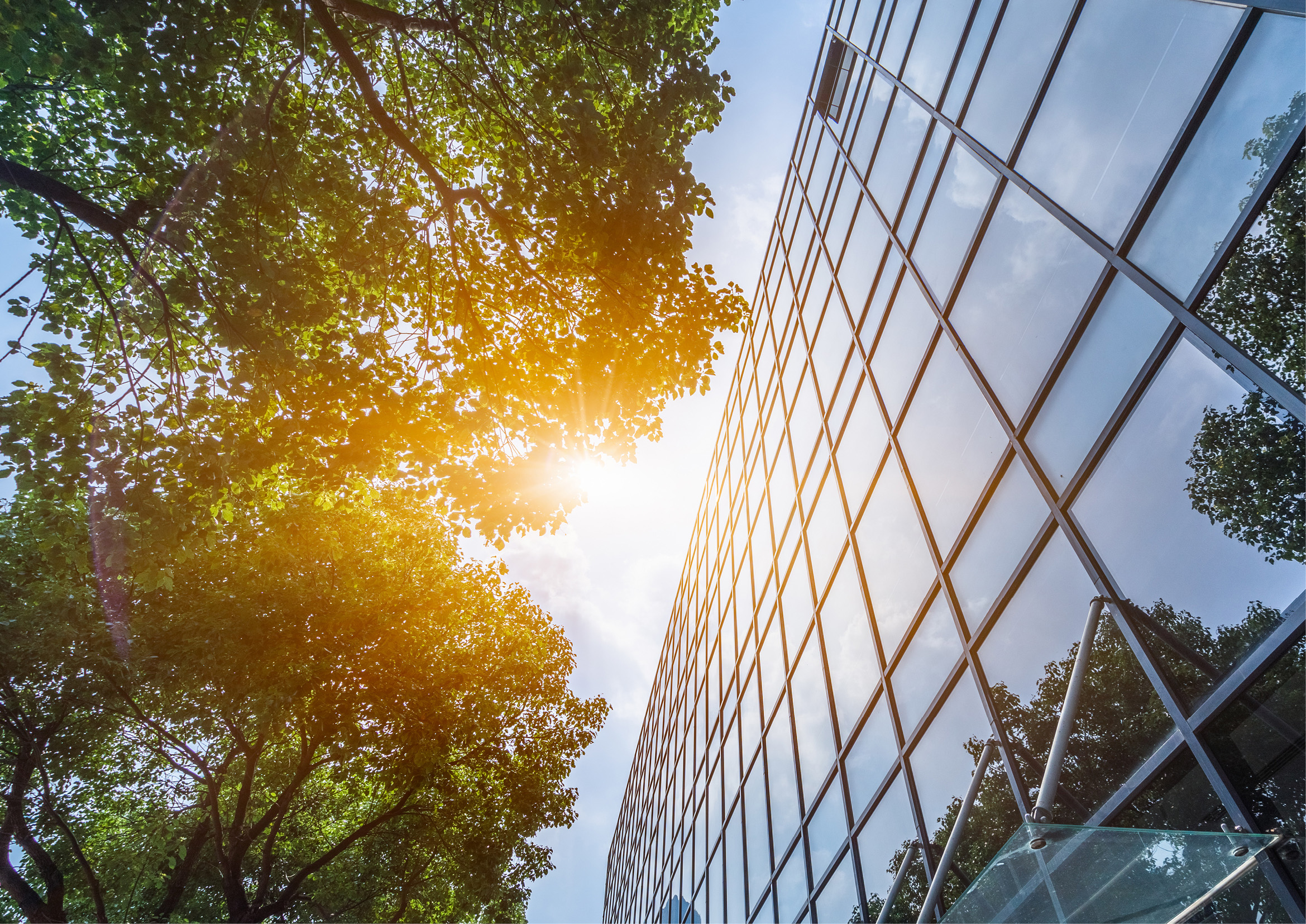 Webinar: ESG Disclosure and Due Diligence: Through the Lens of Equity Capital Markets Thumbnail Image